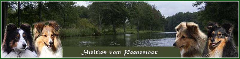 Gästebuch Banner - verlinkt mit http://www.shelties-vompeenemoor.de